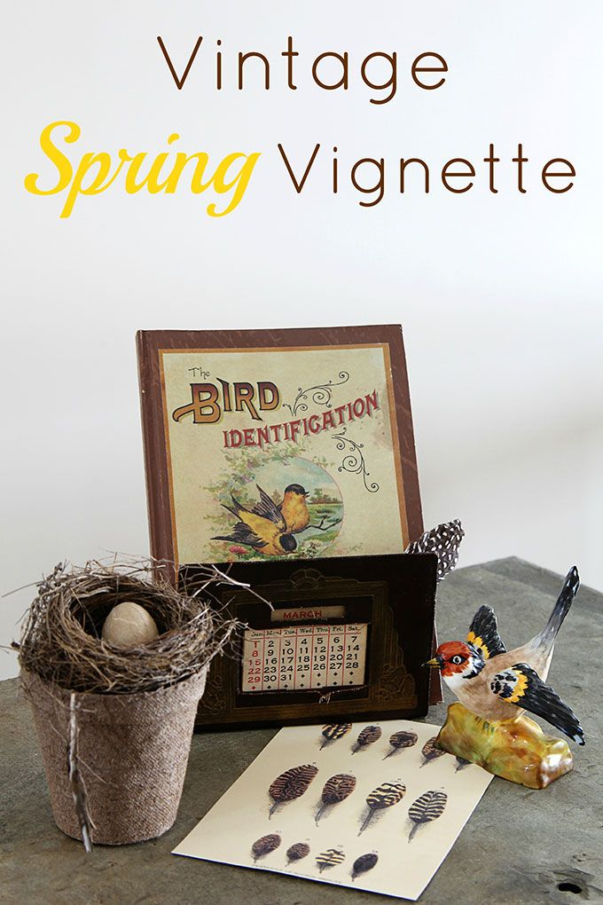 Local Home Decor Stores Part - 47: A Quick And Easy Spring DIY Project Creating A Vignette Using Vintage Bird  Nest Home Decor