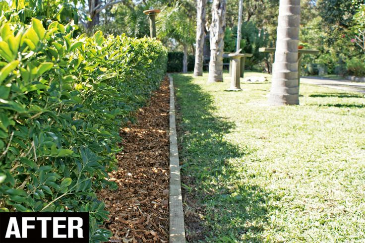 Best 25 landscape timber edging ideas on pinterest for Best way to lay out a garden