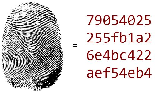 Safety of passwords and algorithms MD5, SHA1.