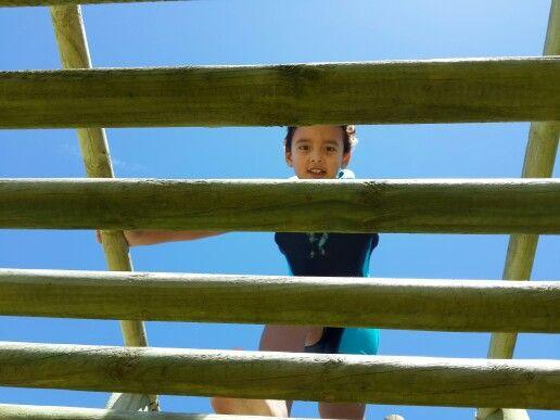 Kids love jungle gyms