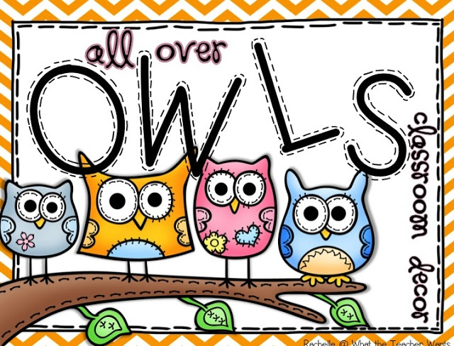 All Over Owls {Classroom Decor} - to buy or not to buy?