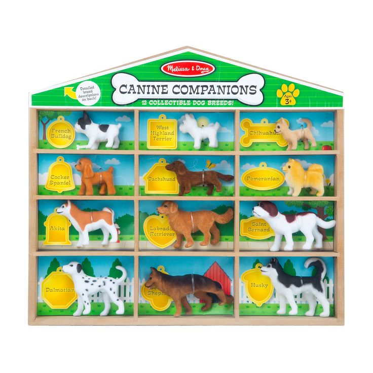"Playtime is going to the dogs! This collection of 12 adorable felt-covered canine miniature models includes some of the most beloved and popular breeds, ranging from the small but mighty Chihuahua and Pomeranian to gentle giants like the Saint Bernard and Husky. The dogs store in individual labeled compartments in the ""dog house."" Information on all the breeds is included. Kids 3 and older will love to play with and learn about man's best friends!"