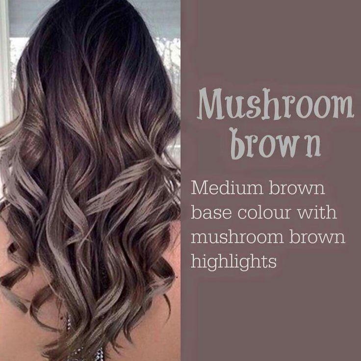 Mushroom Brown Higlight Hair color ideas 2017