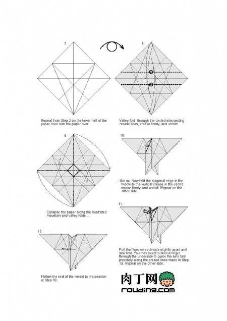 best 25  origami eagle ideas on pinterest