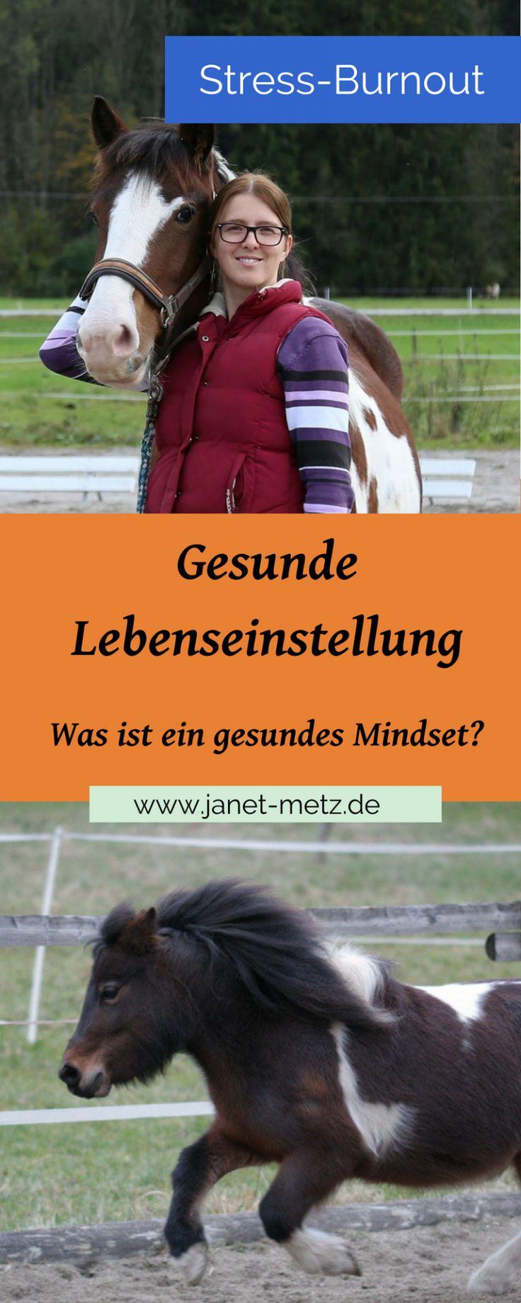 Gesunde Lebenseinstellung - Janet Metz - Pferdegestützte Persönlichkeitsentwicklung