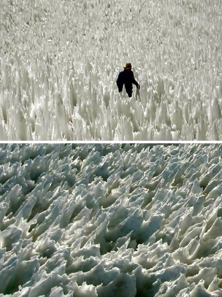 Penitentes are a snow formation found at high altitudes. They take the form of tall thin blades of hardened snow, or ice, closely spaced with the blades oriented towards the general direction of the sun. Penitentes can be as tall as a person.