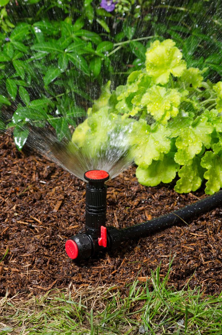 Best 25 Diy Sprinkler System Ideas On Pinterest