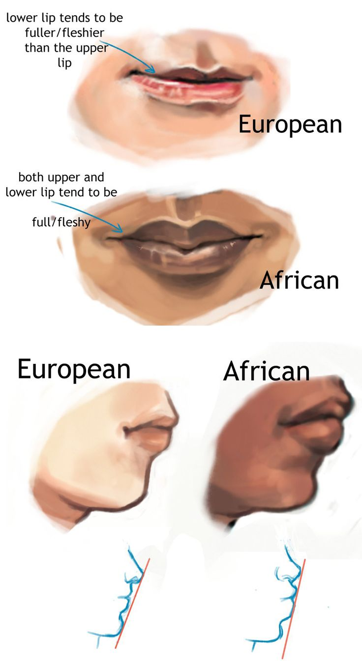 Artistic Reference For Depicting Typical Racial Physical Characteristics;  Focusing On The Appearance Of The Lips Of European And African Races