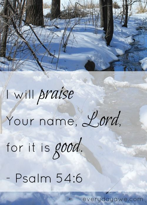 Psalms 54:6-I will freely sacrifice to You; I will praise Your name, O Lord, for it is good.  ~~Agrainofmustardseed.com - reaching the world w/the word of God, one SEED at a time!