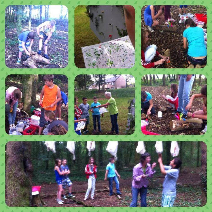 #Startblok #Cuijk Groep8: Zoek/ontdek- en crea-opdrachten in het bos aan de Galberg. Met dank aan #IVN De Groene Overlaat!