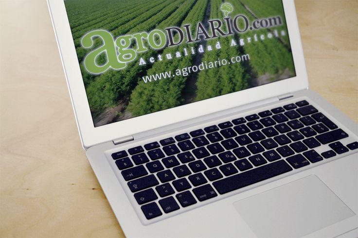 actualidad agraria de cada día : www.agrodiario.com