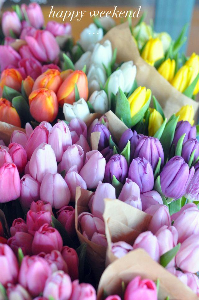 Happy Weekend Tulips
