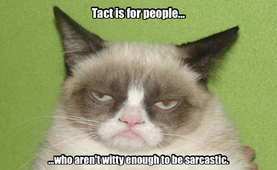 Tact is for dummies.