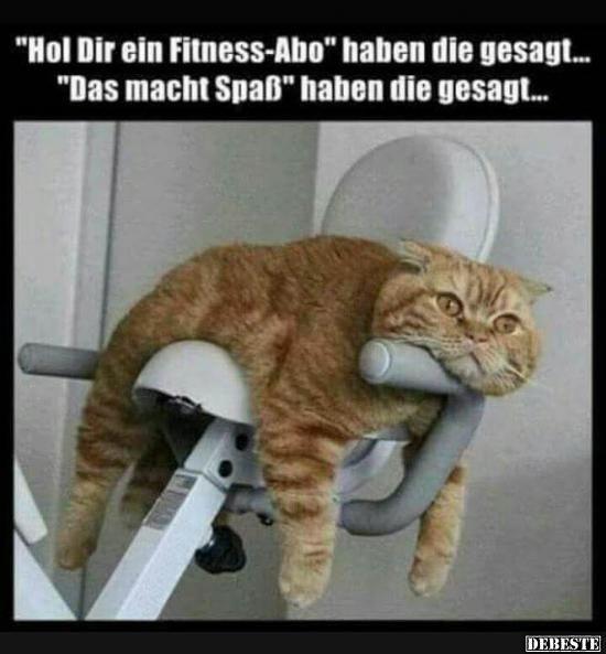 Besten Bilder, Videos und Sprüche und es kommen täglich neue lustige Facebook Bilder auf DEBESTE.DE. Hier werden täglich Witze und Sprüche gepostet! – Ralf Trombik