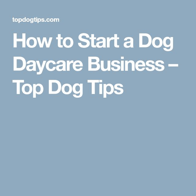 How to Start a Dog Daycare Business – Top Dog Tips #howtostartadaycarebusiness