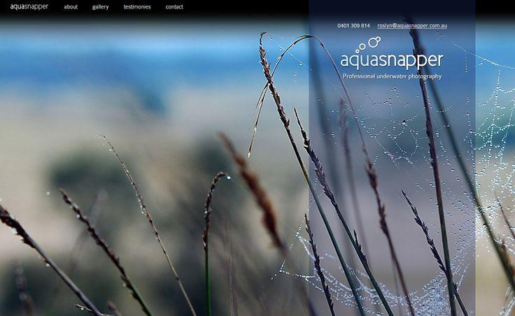 AquaSnapper | from Elfshot Web Design Folio