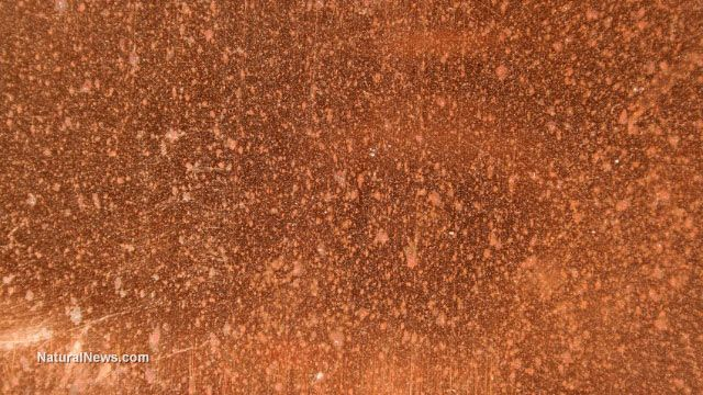 Copper surfaces could be crucial to stopping Ebola outbreak    November 07, 2014 by: David Gutierrez
