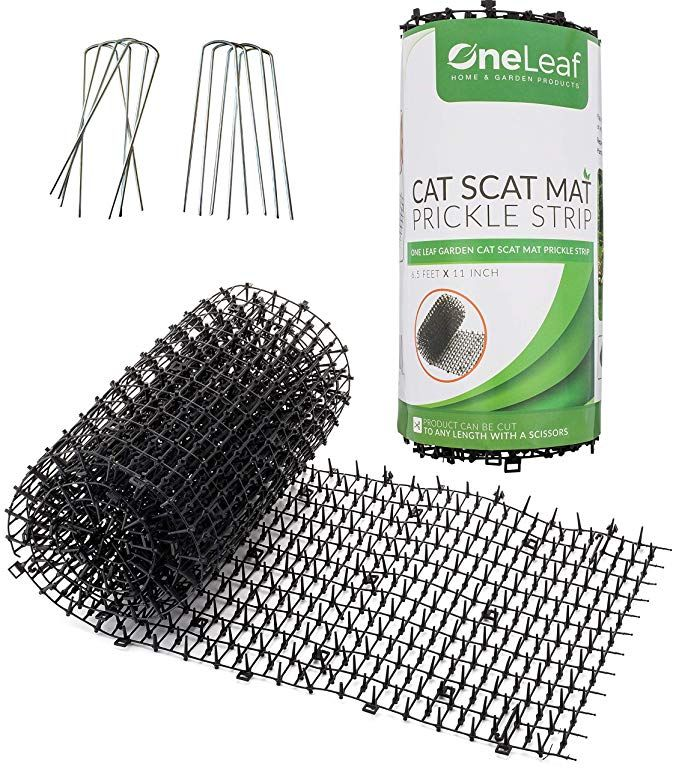 Amazon Com Homarden Garden Cat Scat Mat Anti Cat And Pest Prickle Strip 6 5 Ft 8 Garden Staples Included Cat Repellant Garden Cat Repellant Scat Mat