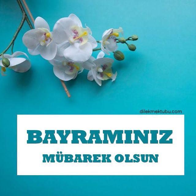 Resimli Bayram Mesajlari Dilek Mektubu Mesajlar Dualar Ramazan