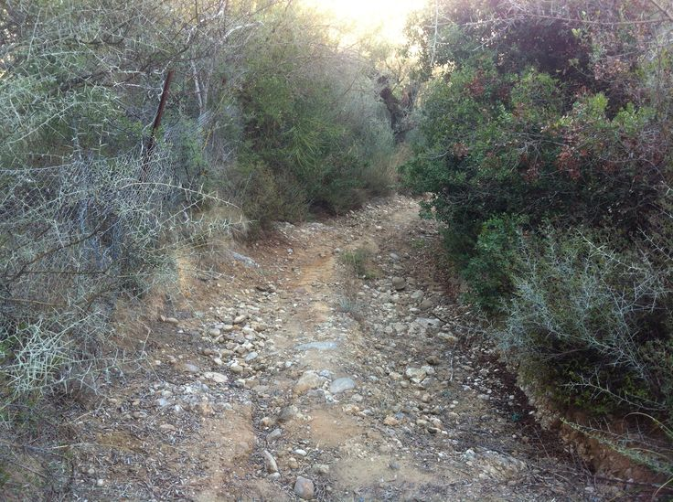 Running a hidden path, leading to some ancient tombs