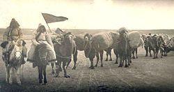 Sart terimi, tarihi süreç içerisindebirçok anlam yüklenilen, Orta Asya coğrafyasındaki halklar tarafından değişik anlamlarda kullanılancanlı bir terimdir.Terim tüccar, ziraat ve ticaretle uğraşan anlamlarına gelir. Kaşgarlı Mahmud, Yusuf Has Hacib, Reşideddin, Ali Şir Nevai, Babür, Ebul Gazi Bahadır Han gibi müelliflerin eserlerinde genelde tüccar anlamında açıklanan sart teriminin 1860'lı yıllardan itibaren bilhassa Rusça yazılı kaynaklarda sık sık yer almaya başladığı