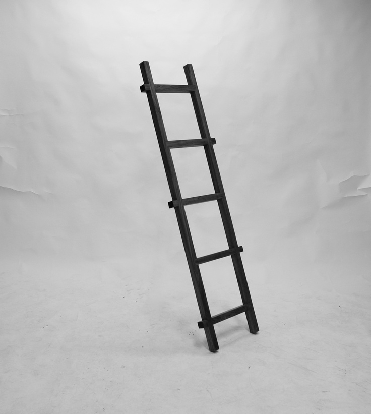 .TEBIAN – Vision About Ladders