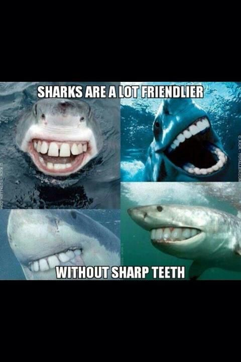 This picture makes me smile because Sharks DO look a lot friendlier without sharp teeth! When I saw this picture, it actually made me laugh out loud.. i wish I could see a shark like this in real life! haha It also made me smile because my son is obsessed with sharks, so it made me think of him and how much he is going to laugh when I show this picture :) #FABsmile
