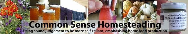 common sense homesteading