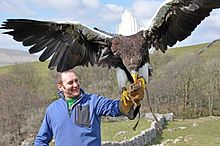 Steller's Sea Eagle is a very large eagle in compariso On average it is the heaviest eagle in the world (11-20lbs). It's named after the German naturalist, Georg Stellar. The wingspan is from 6.4-8.2ft. It's found  on the northeastern coasts of Asia.