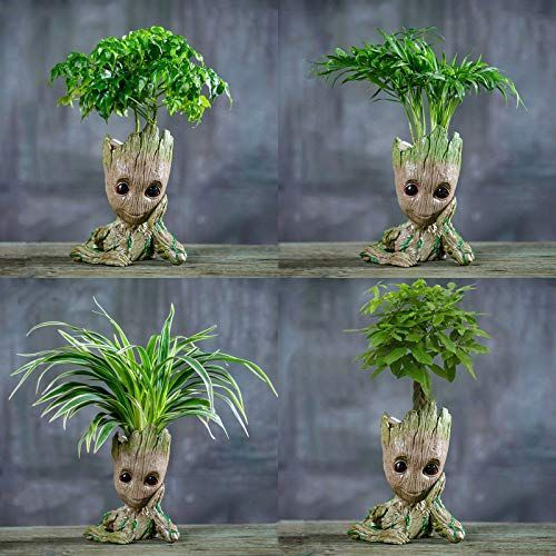 I Am Goot Flowerpot Flowerpot Gootflowerpot Goot Vases
