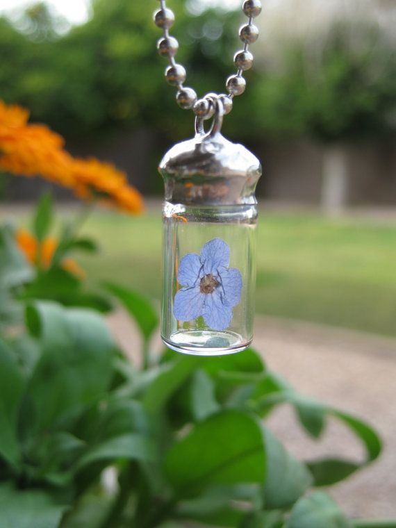 Glass Vial Pendant with a Real Forget Me Not Flower