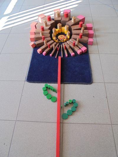 lentebloem met zintuiglijk materiaal - MontessoriNet