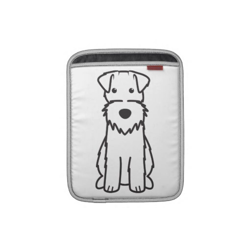 66 best Wire Fox Terrier images on Pinterest | Terrier dogs, Wire ...
