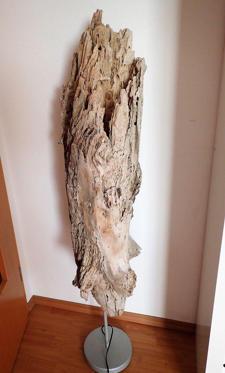 Einzigartige Stehlampe aus einem Stück Treibholz / Schwemmholz diese Lampe ist ein echtes Unikat und ein toller Blickfang Dieser von Termiten ausgehöhlte Baumstamm stammt von Strand auf Korsika´s...