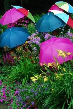 Whenever it rains the flowers are protected by umbrellas.  Just as pretty as the flowers & more humerous!