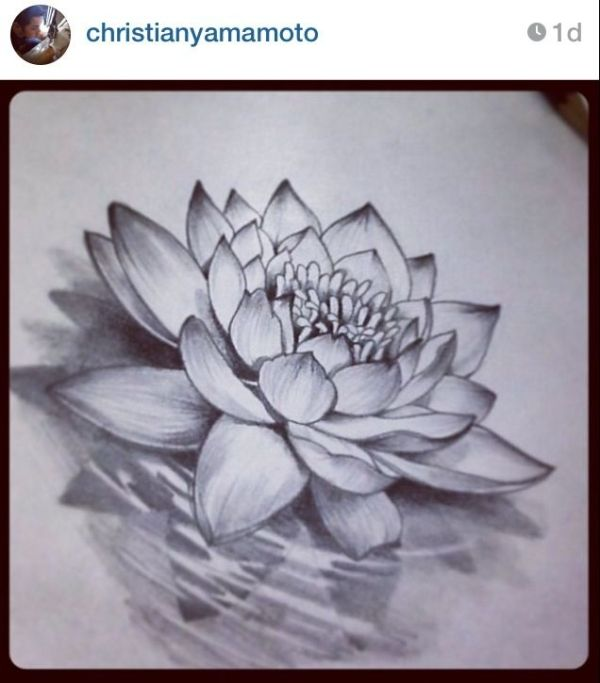 Love this Lotus flower by juana