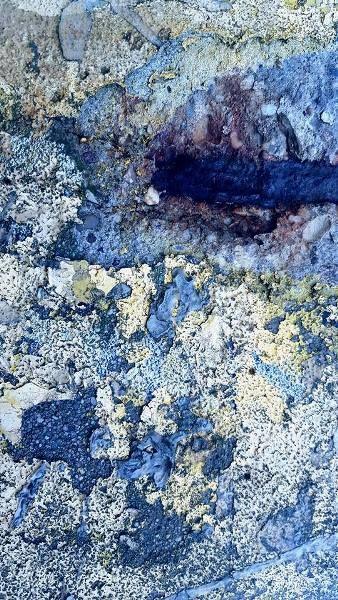 Iva Trzcinska | Obrazy destrukcji #16 | Obrazy destrukcji to cykl dokumentujący zapis destrukcji, czyli powolnego niszczenia zarówno obiektów stworzonych przez człowieka, jak i wytworów naturalnych. Próba doszukania się piękna w tym, co z założenia powinno być zapisem brzydoty. Zdjęcia autorskie przetworzone cyfrowo.