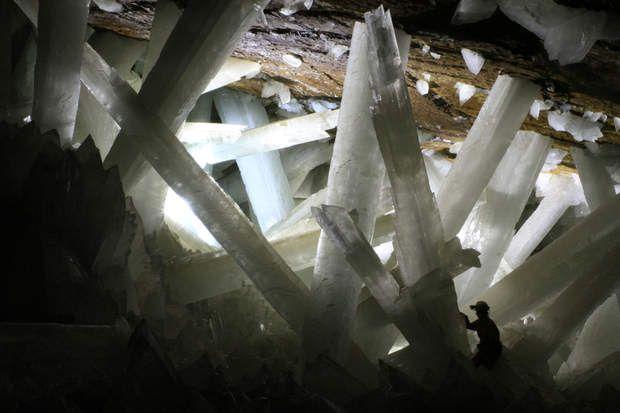"""Jusqu'à 12 mètres de haut et deux mètres de diamètre. Les cristaux de gypse de la """"grotte de cristal"""" au Mexique comptent parmi les plus grands du monde. La présence d'eaux chaudes (environ 50°C) saturées en sulfate de calcium a permis leur formation, qui a débuté il y a plus de 600 000 ans."""
