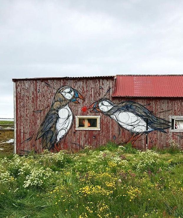 Dzia puffin bird street art