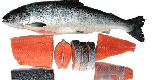 Ikan Salmon Membantu Memerangi Kanker Paru-Paru