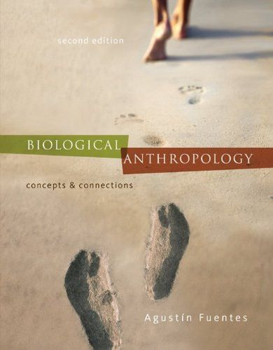 13 best anthropology images on pinterest biological anthropology concepts and connections bb anthropology fandeluxe Image collections