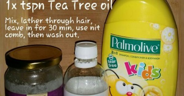 Head Lice / Nit Treatment | Healthy Kids | Pinterest | Head lice nits and Lice nits