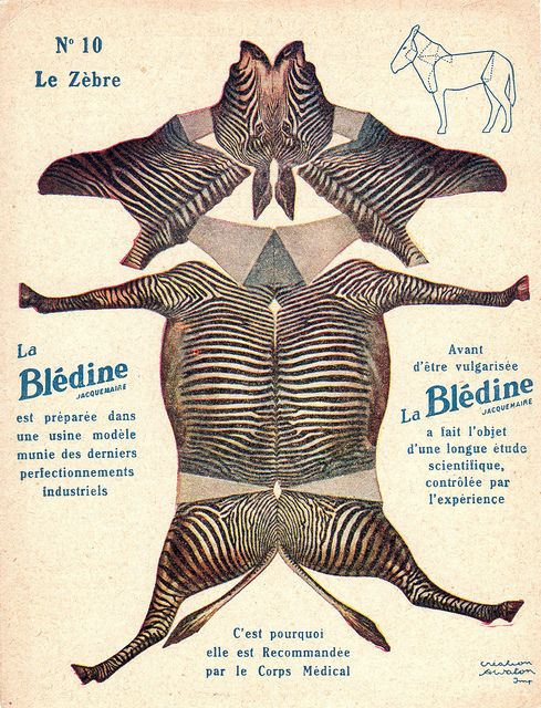 "bledine zebre by pilllpat (agence eureka), via Flickr. Advertising folding-cutting offered by ""The Blédine"""