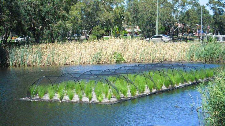 Floating Wetlands Floating Islands Aqua Biofilter City Of