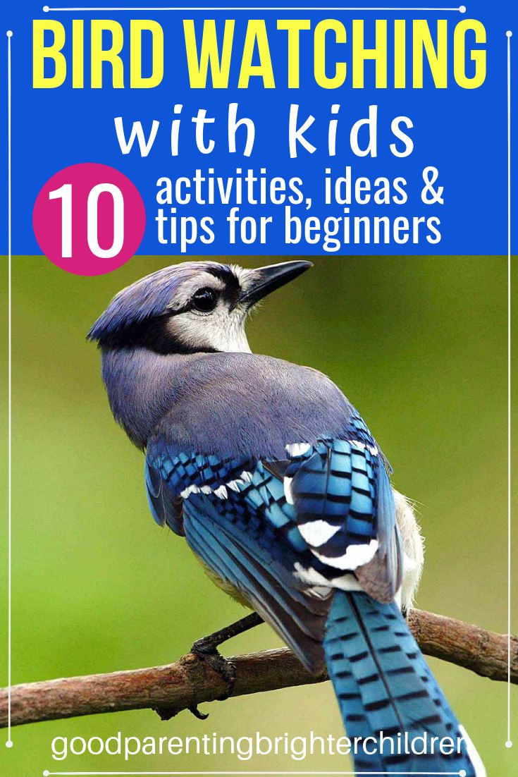 Great outdoors 10 fun things to teach your kids about