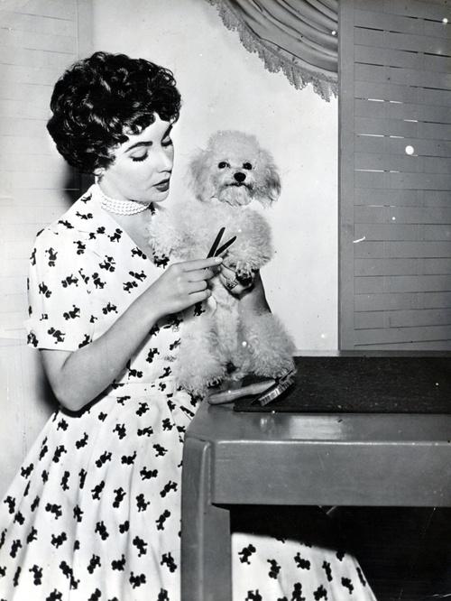 Elizabeth Taylor and her dog