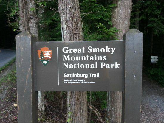 Gatlinburg Trail, Gatlinburg Picture: Fun little day hike. - Check out TripAdvisor members' 27,503 candid photos and videos of Gatlinburg Trail