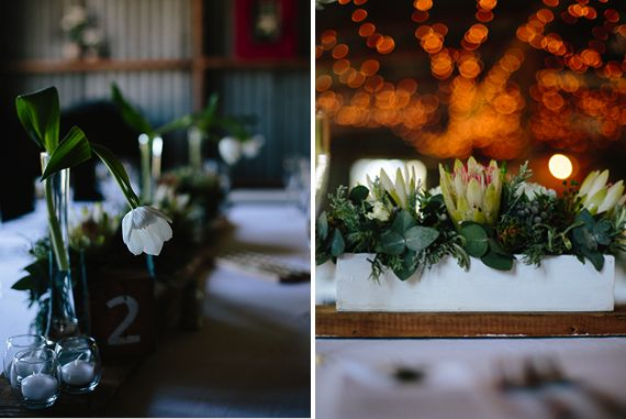 "Photographer: <a href=""http://judithbelle.co.za/"" target=""blank"">Judith Belle Photography </a>"