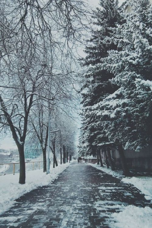 walking in a winter wonderland.