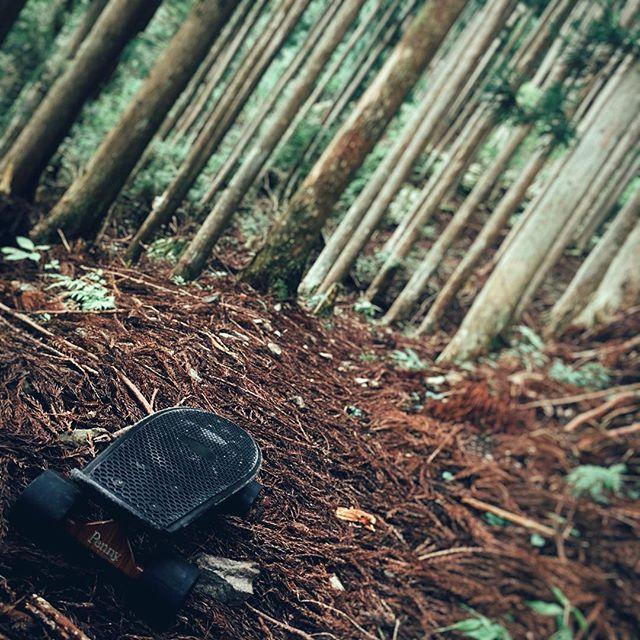 【pennyboard_samurai.danjiboys】さんのInstagramをピンしています。 《Into the woods  #Nara #beutifulriver #japan #penny #nature #street #combination #sk8 #skateboarding #pennyadventure  #samuraiboys #森 #イントゥザウッズ #ペニー #スケボー #ストリートファッション #侍男児 #自然》